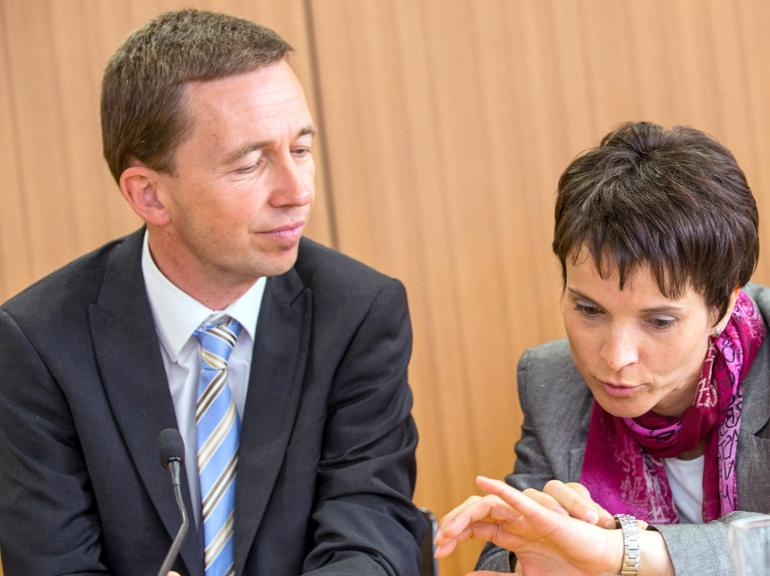 AfD Lucke Petry