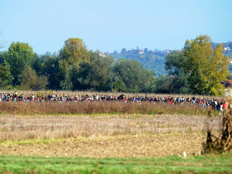 TOPSHOTSMigrants are escorted through fields by police officers, on October 24, 2015 near Rigonce, as they walk towards the Brezice refugee camp. Thousands of migrants marched across the border between Croatia into Slovenia as authorities intensify their efforts to attempt to cope with Europe&#39s largest migration of people since World War II. AFP PHOTO