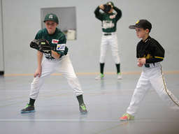 Baseball: Alligators laden zum Schüler-Wintercup ein
