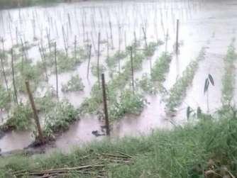 In Nicaragua wurden 5800 Häuser zerstört, 38000 Häuser beschädigt. Die Stürme der vergangenen Wochen vernichteten große Teile der Ernte. Fotos: Förderverein Städtepartnerschaft Jinotega